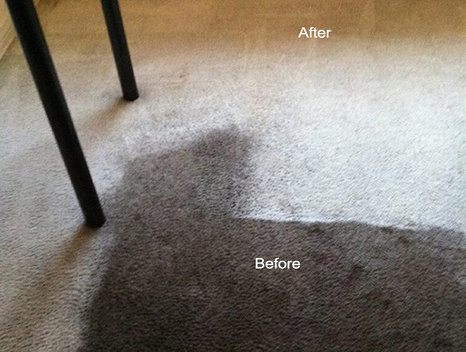 carpet cleaner los angeles